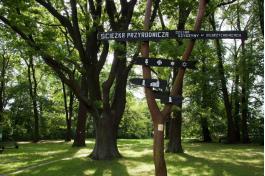 """Zdjęcie obiektu turystycznego: Ścieżka przyrodniczo-leśna """"Dolina Szyszyny"""""""